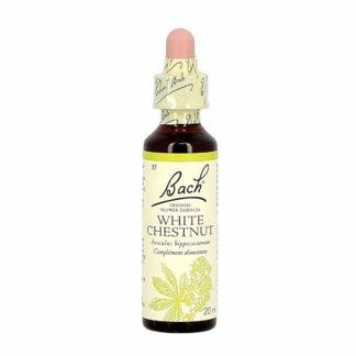 Fleur de Bach White Chesnut/Marronnier Blanc
