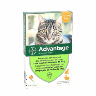 Advantage 40 Anti-Puces Chats et Lapins ≤ 4kg