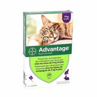 Advantage 80 Anti-Puces Chats et Lapins ≥ 4kg