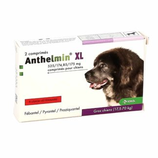 Anthelmin Gros Chiens 17-70kg