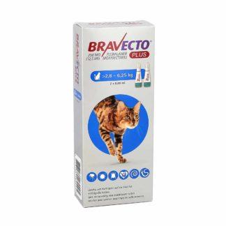 Bravecto Plus Chat de 2